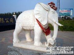 雷竞技官方网站大象价格报价